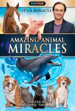 Amazing Animal Miracles