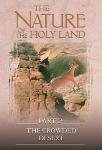 Nature Of The Holy Land #2: Crowded Desert